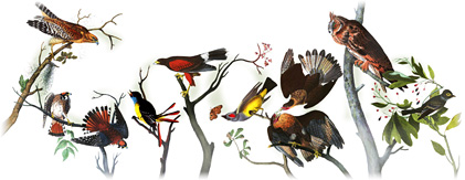 April 26th 2011 - 225th Birthday Of John James Audubon